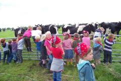 Groep 1 naar de boerderij